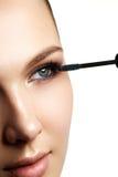 Mascara che applica primo piano, sferze lunghe Spazzola della mascara eyelashes Immagine Stock