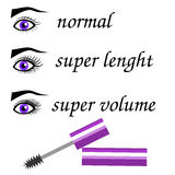 Mascara Effect. The comparison of different mascara effects stock illustration