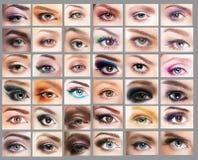 mascara Grande variedade dos olhos das mulheres Grupo de olho imagens de stock