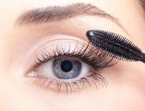 Mascara makeup Stock Images