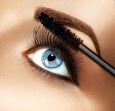 Mascara makeup applying closeup Stock Photography