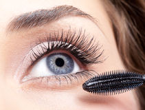 Mascara makeup Stock Photography