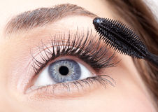 Mascara makeup Royalty Free Stock Photo