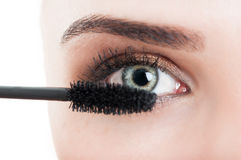 Mascara wand or brush and woman eye Stock Image