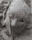 Mascarilla humana de la materia textil Halloween espeluznante scarry fotografía de archivo libre de regalías