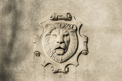 Mascaron of a lion Stock Image