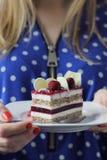 Mascarpone Mousse and Raspberry Jelly Cake Royalty Free Stock Image