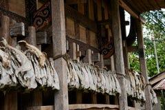 Mascelle del maiale che decorano la casa Immagine Stock