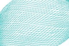 Masche lokalisiert auf Weiß Stockfotografie