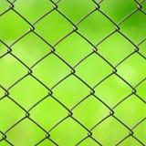 Maschendraht-Zaun-Nahaufnahme auf grünem Hintergrund Stockbilder