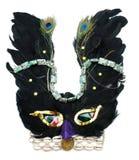 Maschera dell'uccello Fotografie Stock Libere da Diritti