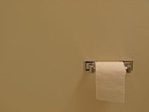 Maschera della priorità bassa della carta igienica Fotografia Stock