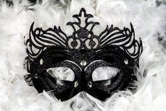Maschera di carnevale Fotografia Stock Libera da Diritti