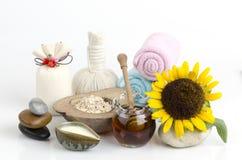 Maschera di protezione con la farina d'avena, il miele ed il yogurt immagine stock libera da diritti