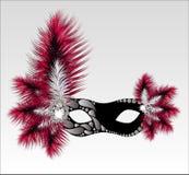 Maschera elegante di carnevale con le belle piume Fotografie Stock Libere da Diritti