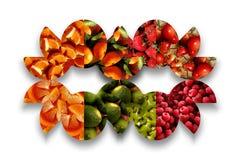 Maschera fruttata variopinta Fotografie Stock Libere da Diritti