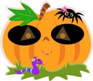 Mascherina della zucca di Halloween con il ragno ed il serpente Fotografie Stock Libere da Diritti