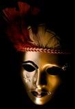 Mascherina veneziana decorata immagini stock libere da diritti