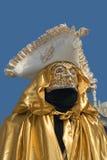 Mascherina veneziana di carnevale Immagine Stock Libera da Diritti