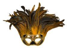 Mascherina veneziana di carnevale Immagine Stock