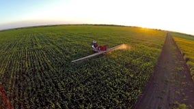 Maschine, die das Maisfeld im Sonnenuntergang wässert stock footage