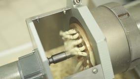 Maschine für die Produktion von Teigwaren stock footage