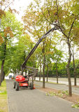 Maschine und Männer, die Bäume in Wien säubern Lizenzfreie Stockbilder
