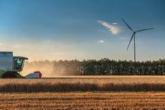 Maschinelles Ernten der Mähdrescher-Landwirtschaft goldenes reifes whe Lizenzfreie Stockfotografie