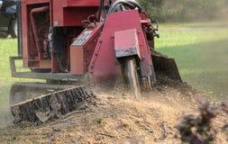 Maschinen-reibender Baum-Stumpf Lizenzfreie Stockfotos