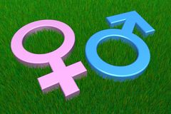 Maschio blu/simboli femminili dentellare su erba Immagini Stock
