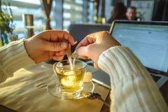 Maschio che sitiing nel tè bevente del caffe e che lavora al computer portatile Fotografia Stock Libera da Diritti