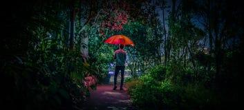 Maschio che sta con l'ombrello d'ardore rosso al parco fotografia stock