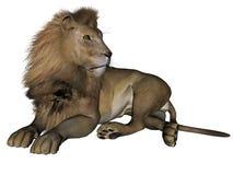 Maschio del leone illustrazione vettoriale