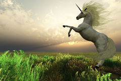 Maschio dell'unicorno Immagine Stock Libera da Diritti