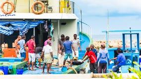 MASCHIO, MALDIVE - 27 NOVEMBRE, 2016: Gli uomini scaricano il grande tonno dalla barca Copi lo spazio per testo fotografia stock libera da diritti