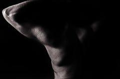 Maschio nudo fotografia stock