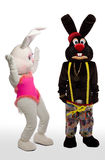 Mascot bunny costume - confused scene Royalty Free Stock Images