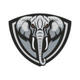 Mascot elephant design illustration emblem sport logo icon isolated royalty free stock photography