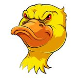 Mascot Head of an duck royalty free illustration