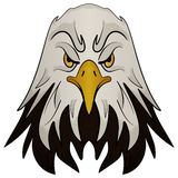 Mascot Head of an Eagle Royalty Free Stock Photo