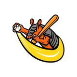 Armadillo Baseball Mascot Royalty Free Stock Image