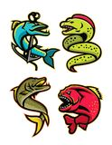 Ferocious Fishes Sports Mascot Collection. Mascot icon illustration set of ferocious and fearsome fishes like the barracuda, moray eel, northern pike or Royalty Free Stock Photography