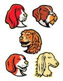 Hound Dogs Mascot Collection Stock Photo