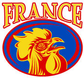Mascot rooster cockerel france Stock Photography
