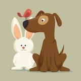mascota amistosa del pájaro del conejito del perro Imagen de archivo
