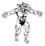 Mascota asustadiza de los deportes del tigre Imagen de archivo libre de regalías