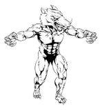 Mascota asustadiza de los deportes del verraco Imagen de archivo