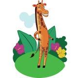 Mascota de la jirafa de la historieta en fondo Imagenes de archivo
