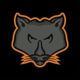 Mascota de la pantera Imágenes de archivo libres de regalías