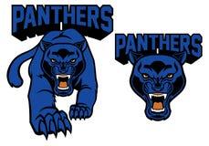 Mascota de la pantera negra Imagen de archivo libre de regalías